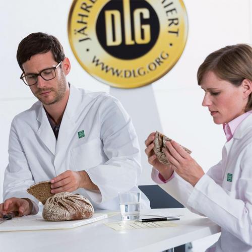 Program Bread Testing Food (1)